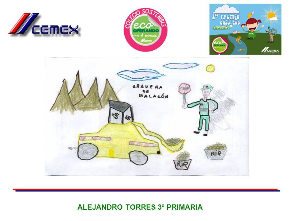 ALEJANDRO TORRES 3º PRIMARIA