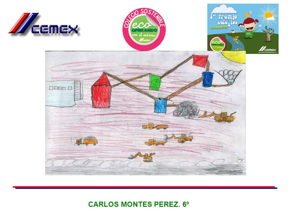 CARLOS MONTES PEREZ. 6º 30