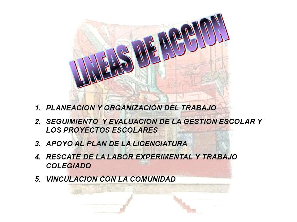 LINEAS DE ACCION PLANEACION Y ORGANIZACIÓN DEL TRABAJO