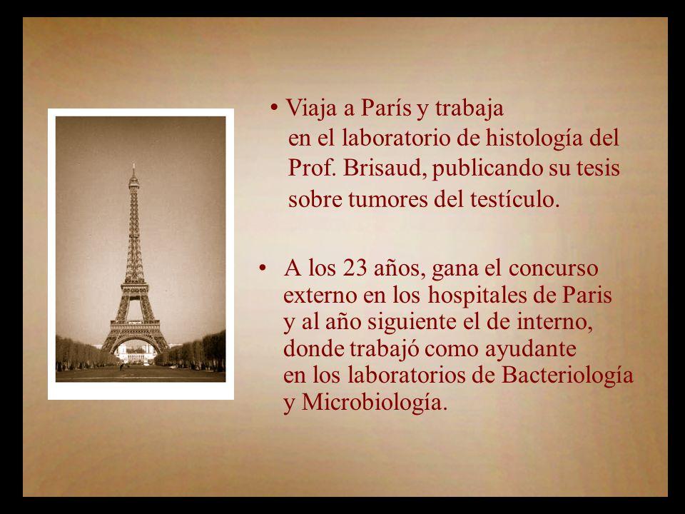 Viaja a París y trabaja en el laboratorio de histología del