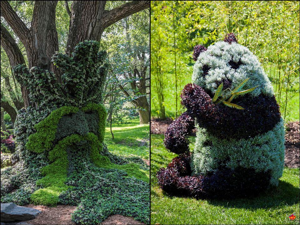 The Botanical Garden of Montreal Canada,