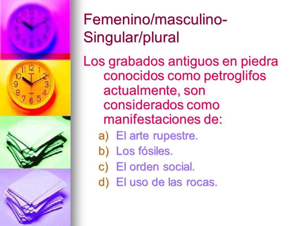 Femenino/masculino- Singular/plural