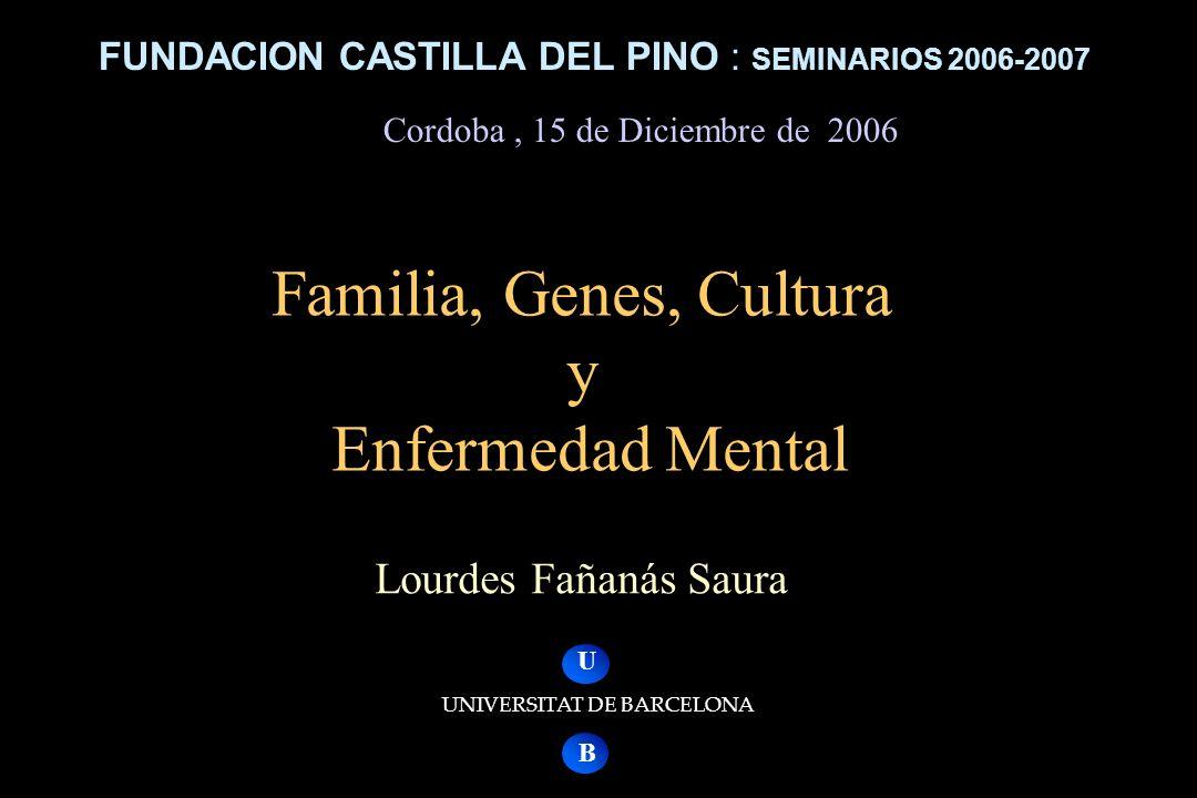 FUNDACION CASTILLA DEL PINO : SEMINARIOS 2006-2007