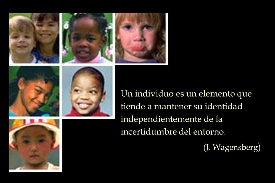 Un individuo es un elemento que tiende a mantener su identidad