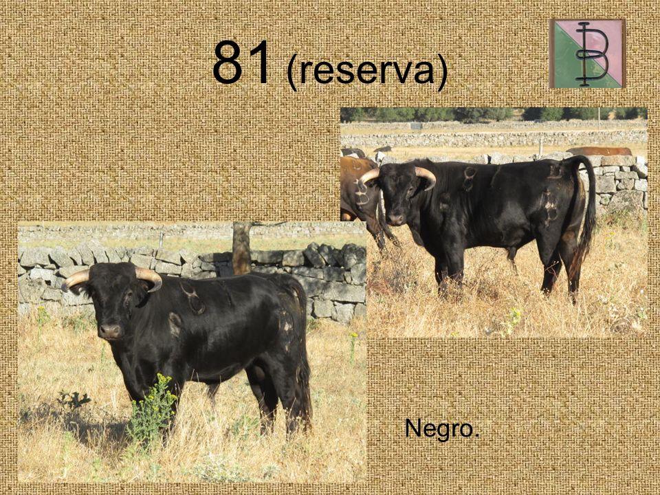 81 (reserva) Negro.