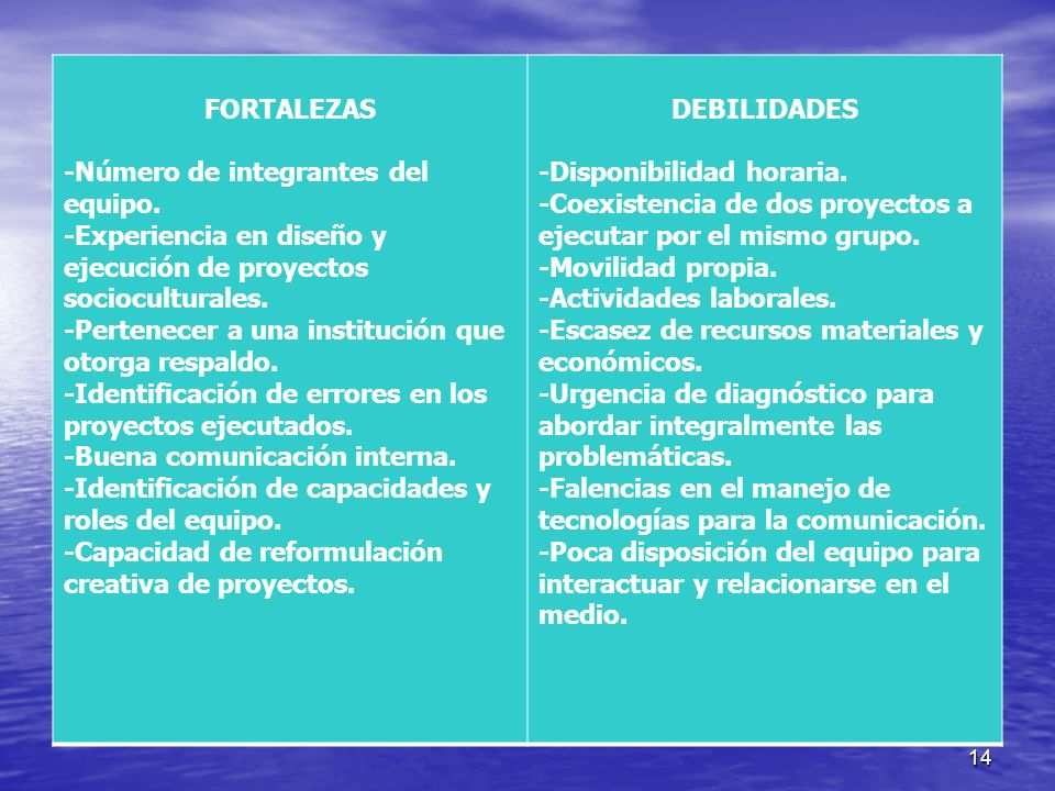 FORTALEZAS -Número de integrantes del equipo. -Experiencia en diseño y ejecución de proyectos socioculturales.