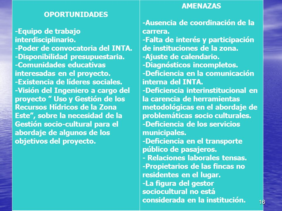 OPORTUNIDADES -Equipo de trabajo interdisciplinario. -Poder de convocatoria del INTA. -Disponibilidad presupuestaria.