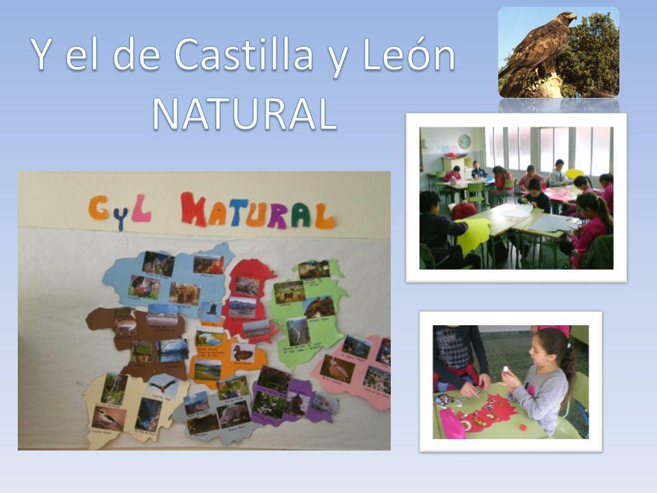 Y el de Castilla y León NATURAL