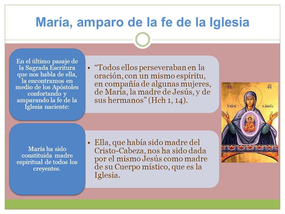 María, amparo de la fe de la Iglesia