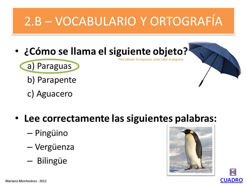 2.B – VOCABULARIO Y ORTOGRAFÍA