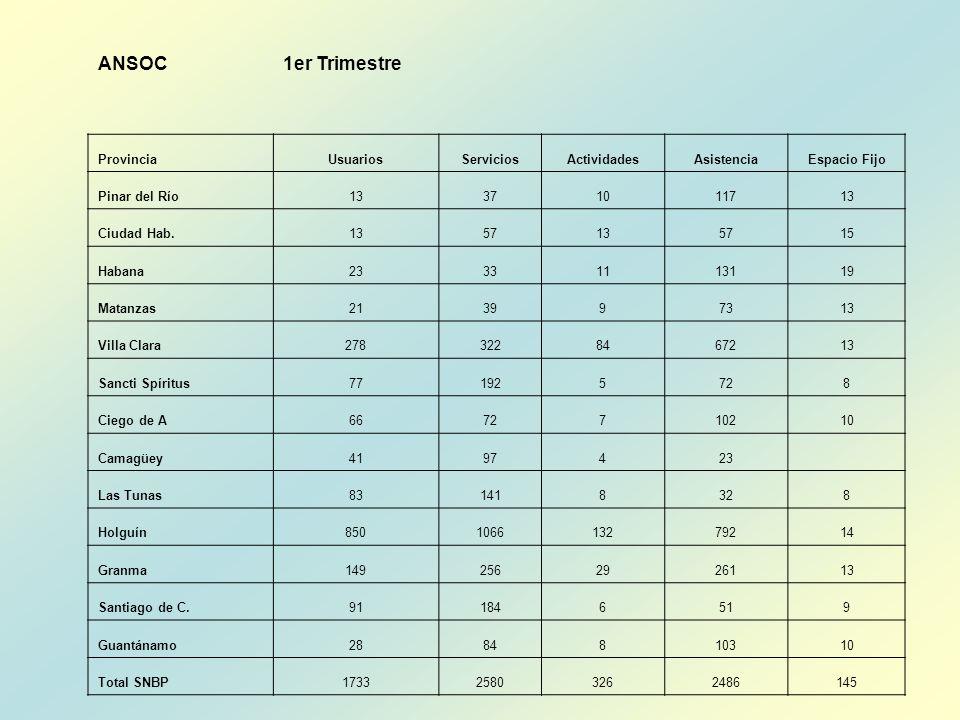 ANSOC 1er Trimestre Provincia Usuarios Servicios Actividades