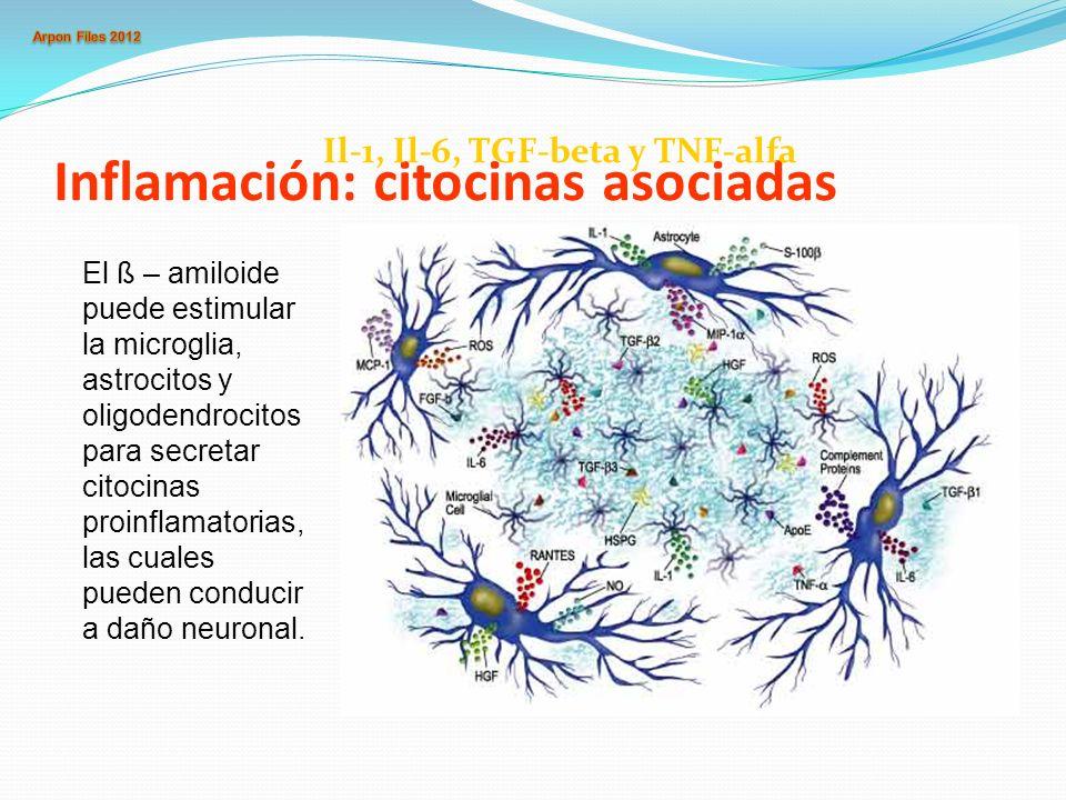 Inflamación: citocinas asociadas