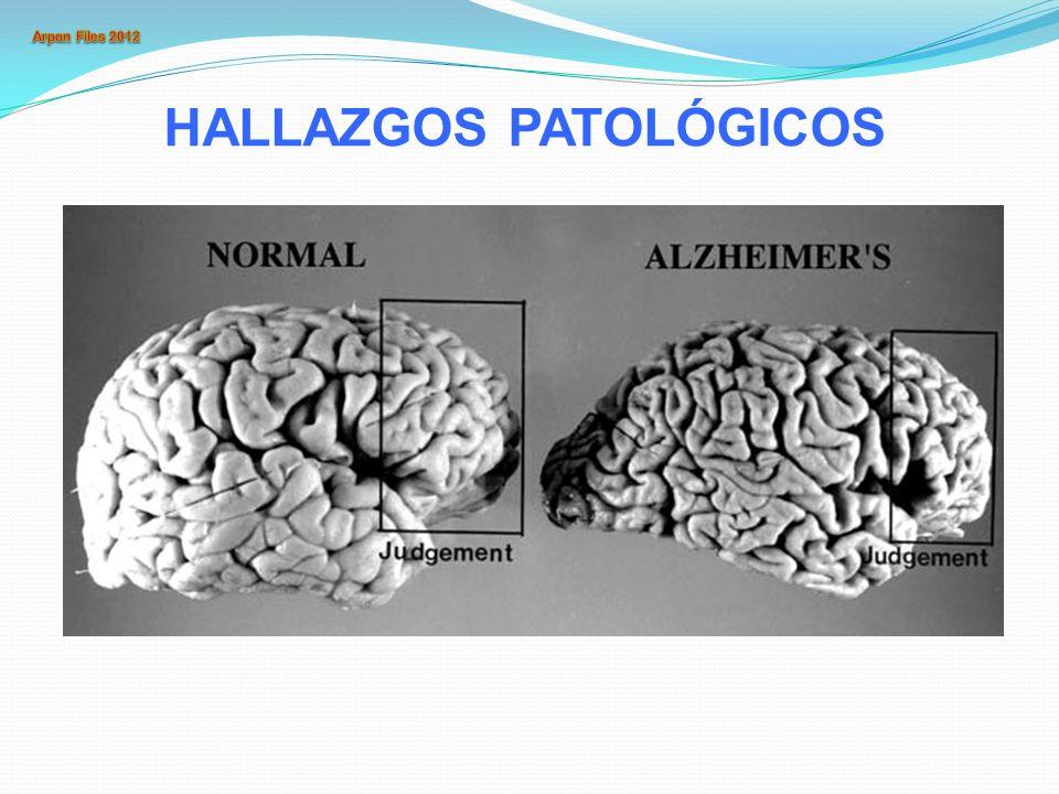 HALLAZGOS PATOLÓGICOS