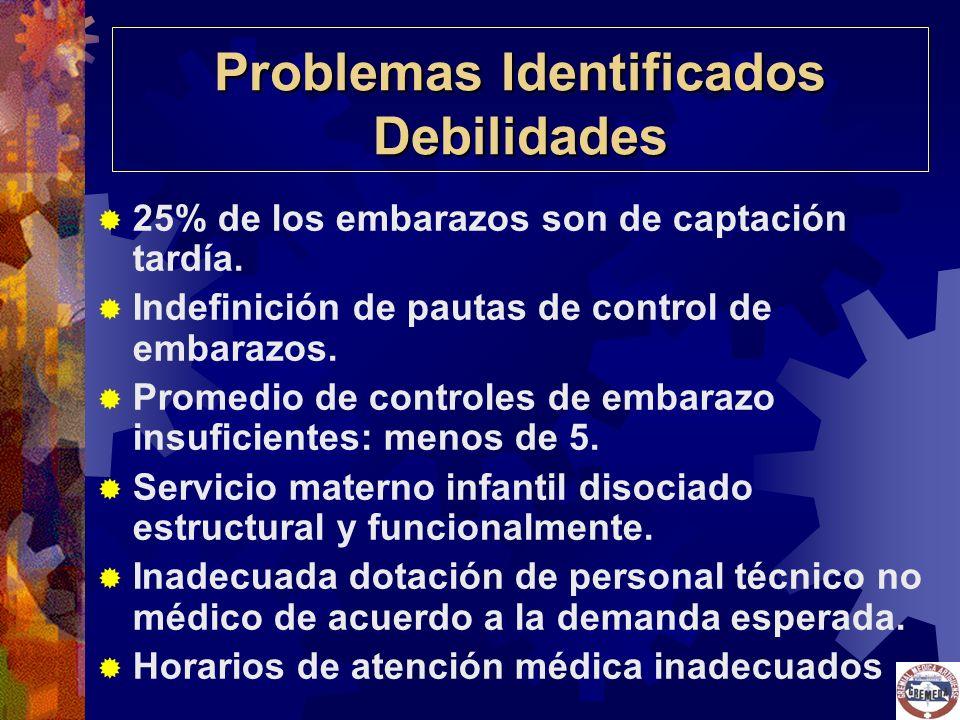 Problemas Identificados Debilidades