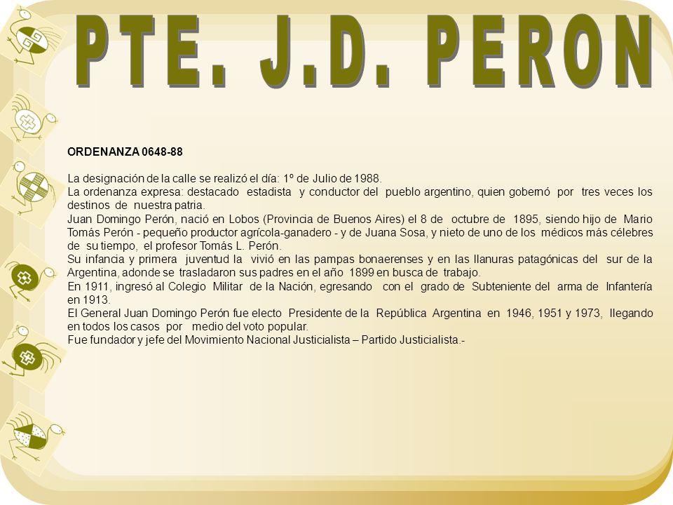 PTE. J.D. PERON ORDENANZA 0648-88