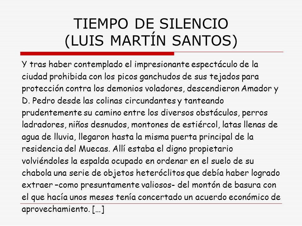 TIEMPO DE SILENCIO (LUIS MARTÍN SANTOS)
