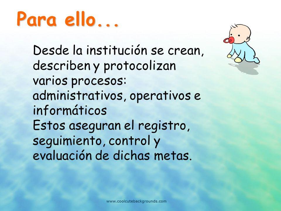 Para ello... Desde la institución se crean, describen y protocolizan varios procesos: administrativos, operativos e informáticos.