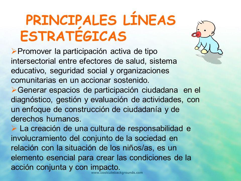PRINCIPALES LÍNEAS ESTRATÉGICAS