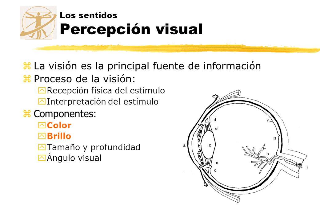 Los sentidos Percepción visual