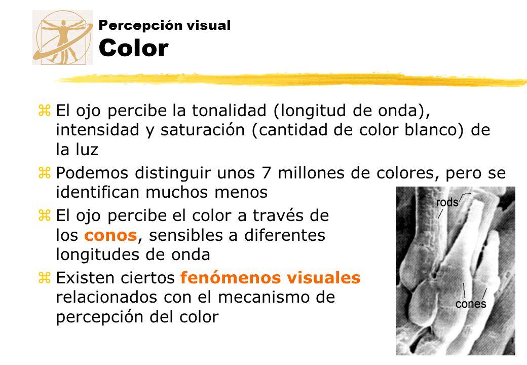 Percepción visual Color