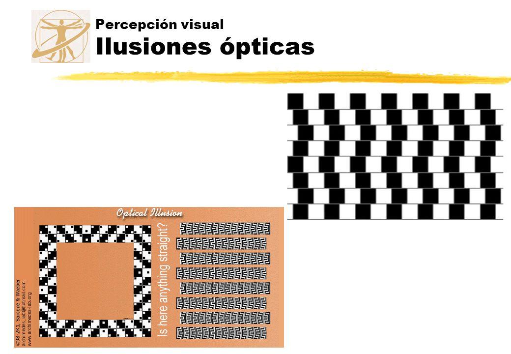 Percepción visual Ilusiones ópticas