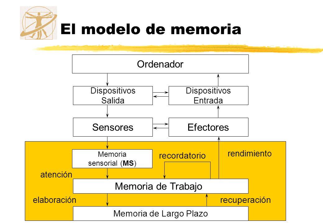 El modelo de memoria Ordenador Sensores Efectores Memoria de Trabajo