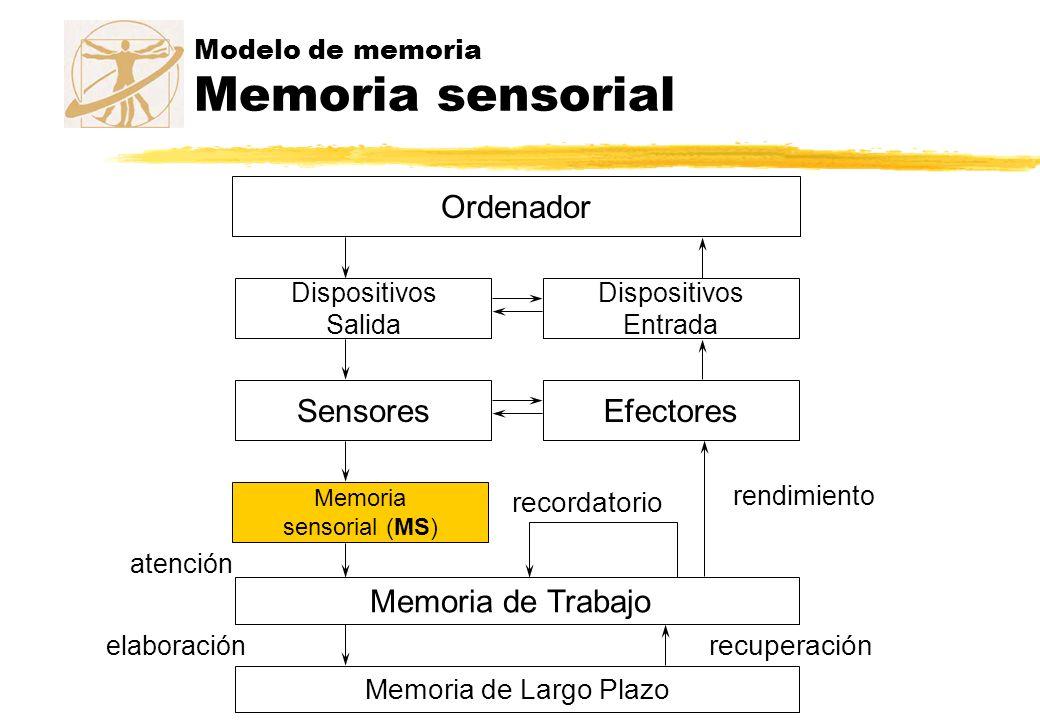 Modelo de memoria Memoria sensorial