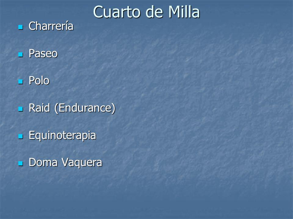 Cuarto de Milla Charrería Paseo Polo Raid (Endurance) Equinoterapia