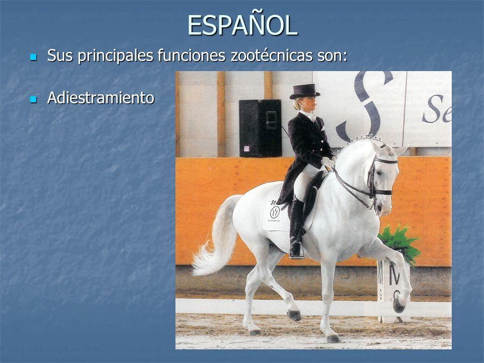 ESPAÑOL Sus principales funciones zootécnicas son: Adiestramiento