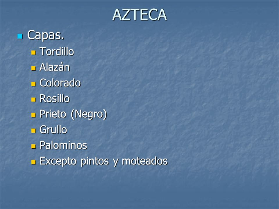 AZTECA Capas. Tordillo Alazán Colorado Rosillo Prieto (Negro) Grullo