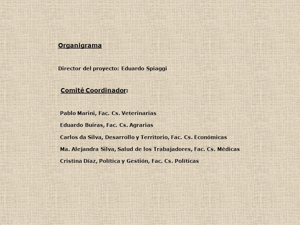 Organigrama Comité Coordinador: Director del proyecto: Eduardo Spiaggi
