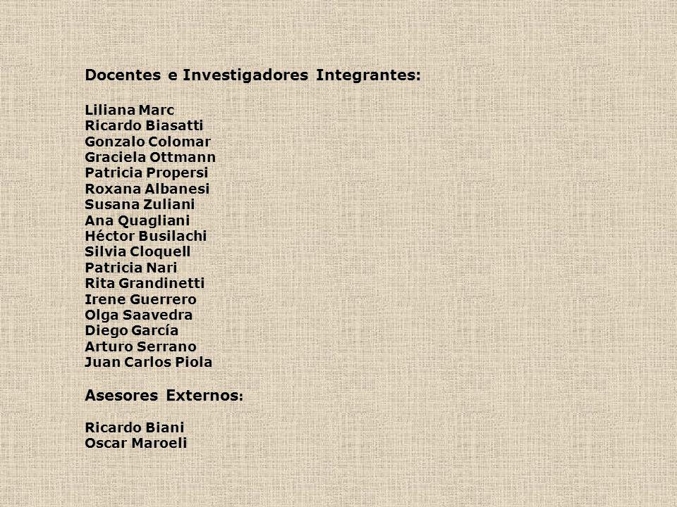 Docentes e Investigadores Integrantes: