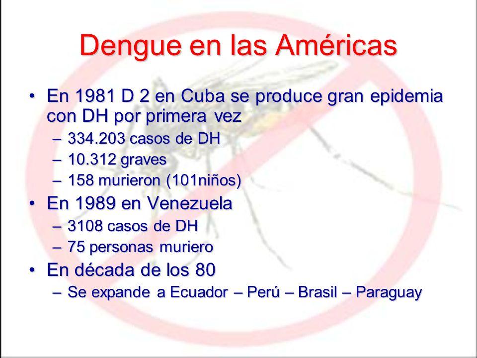 Dengue en las Américas En 1981 D 2 en Cuba se produce gran epidemia con DH por primera vez. 334.203 casos de DH.