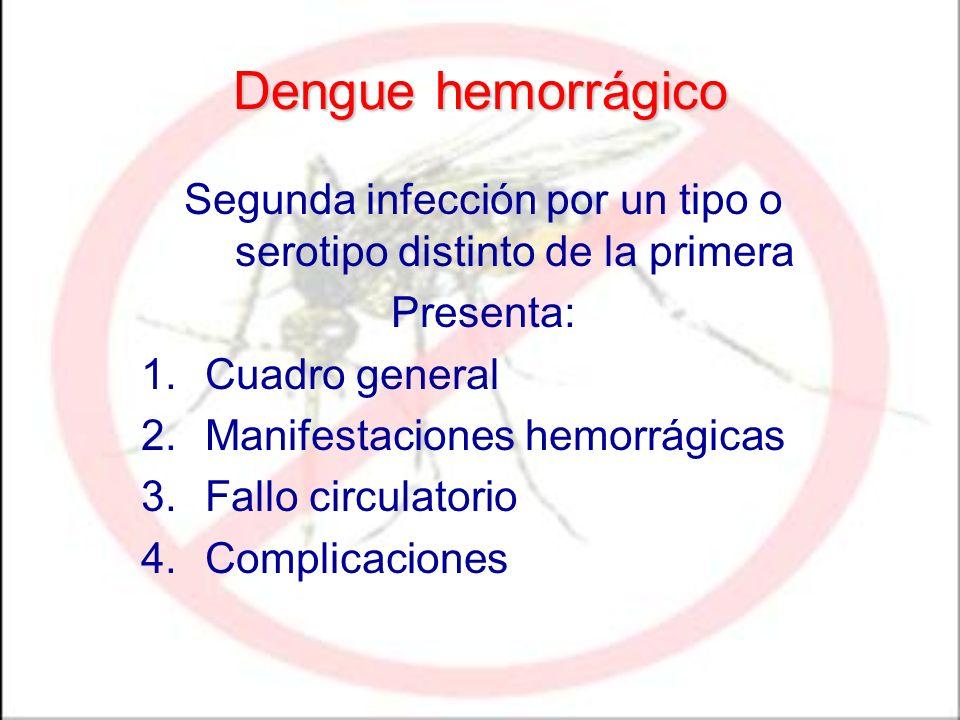 Segunda infección por un tipo o serotipo distinto de la primera