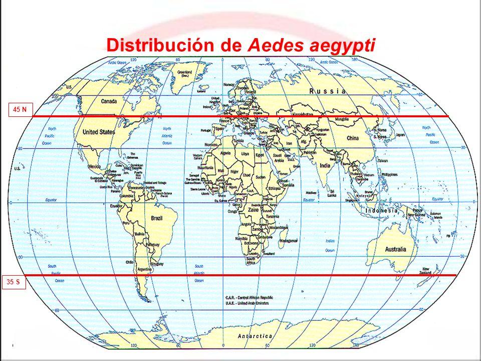 Distribución de Aedes aegypti