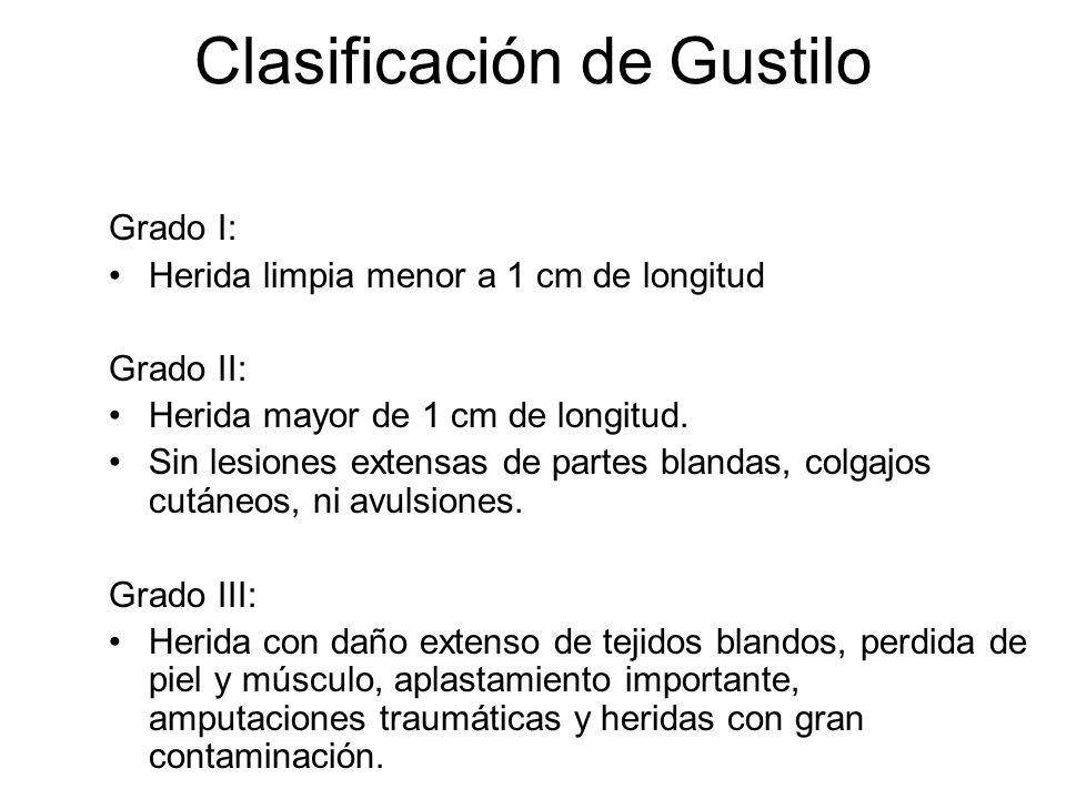 Clasificación de Gustilo