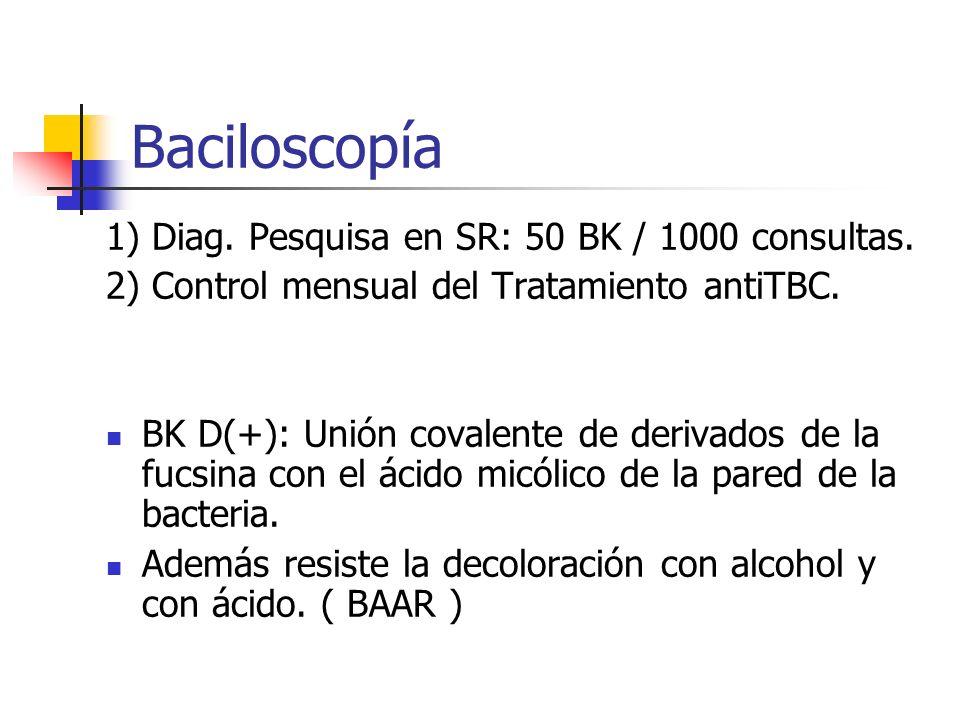 Baciloscopía 1) Diag. Pesquisa en SR: 50 BK / 1000 consultas.