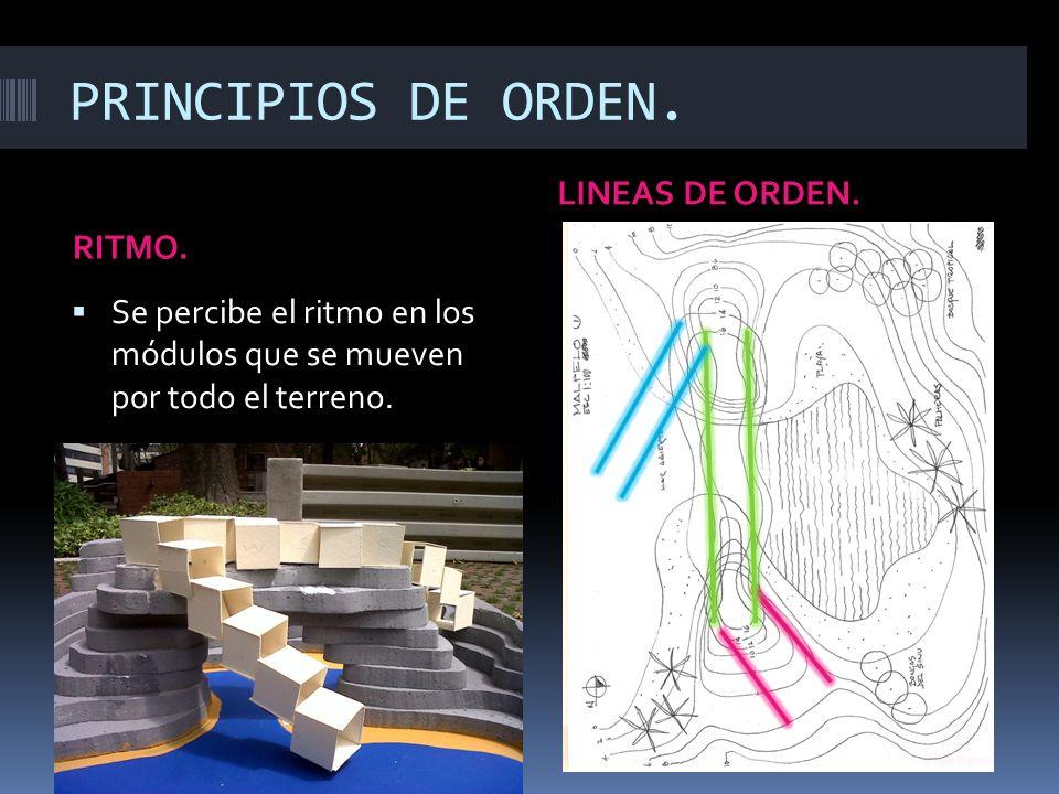 PRINCIPIOS DE ORDEN. LINEAS DE ORDEN. RITMO.