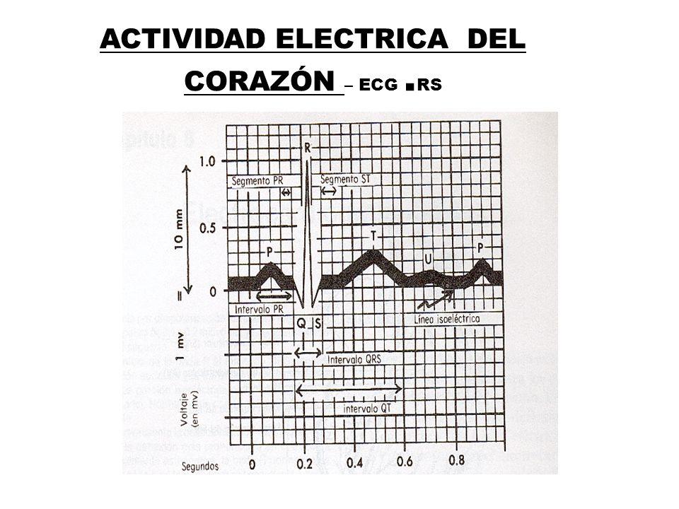 ACTIVIDAD ELECTRICA DEL CORAZÓN – ECG .RS