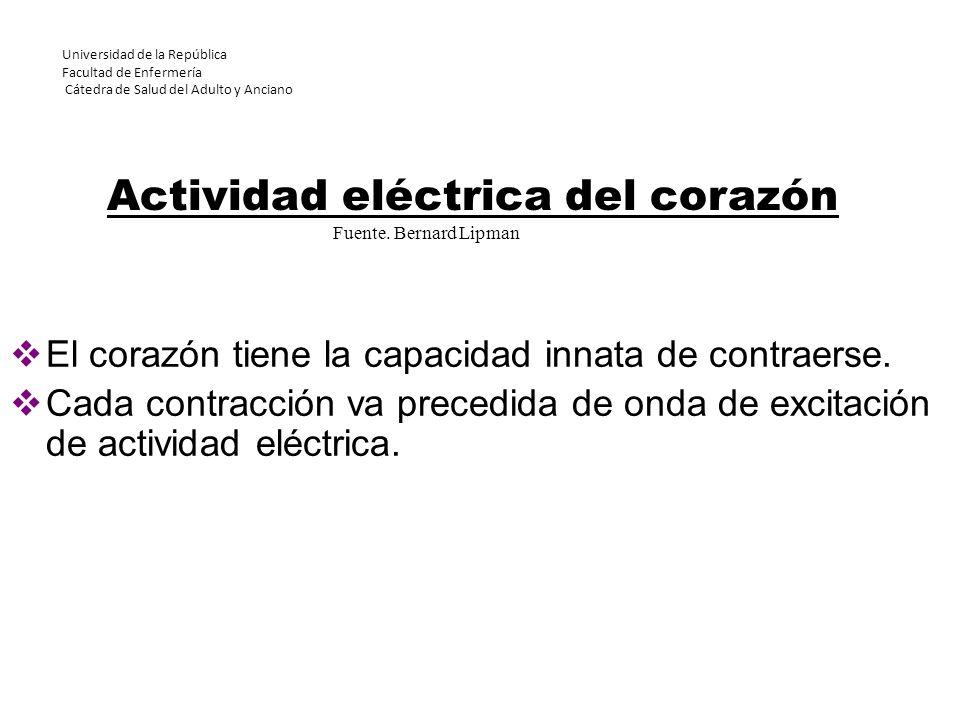 Actividad eléctrica del corazón