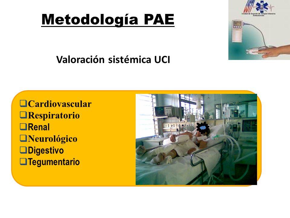 Metodología PAE Valoración sistémica UCI Cardiovascular Respiratorio
