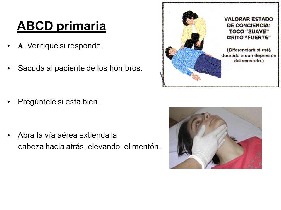 ABCD primaria A. Verifique si responde.