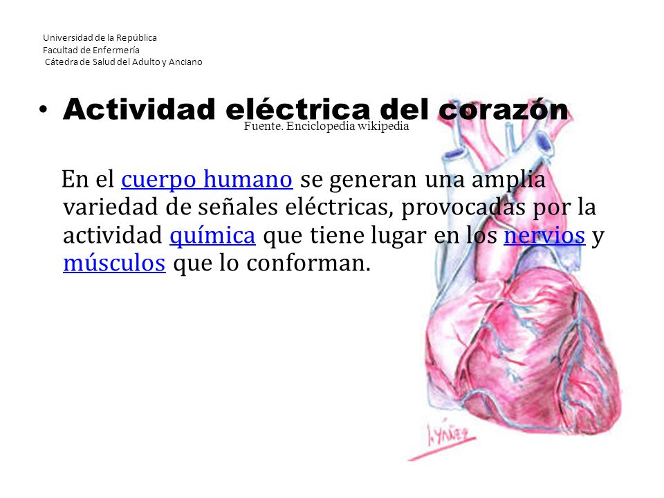 Fuente. Enciclopedia wikipedia