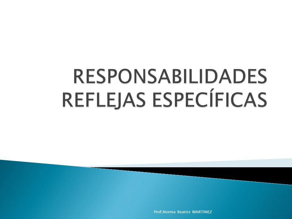 RESPONSABILIDADES REFLEJAS ESPECÍFICAS