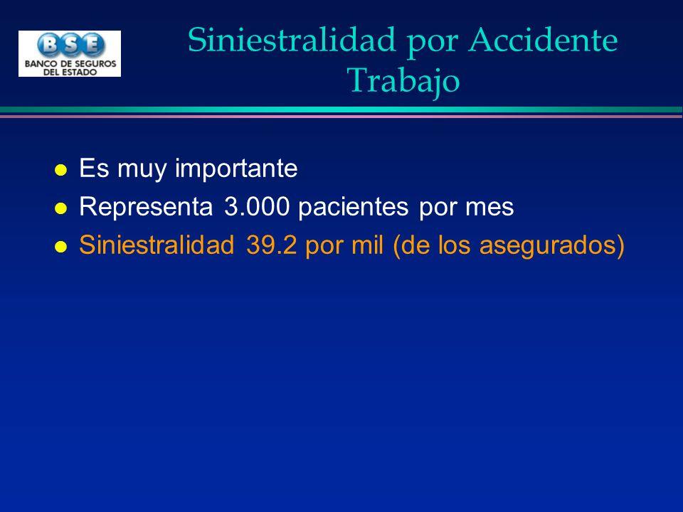 Siniestralidad por Accidente Trabajo