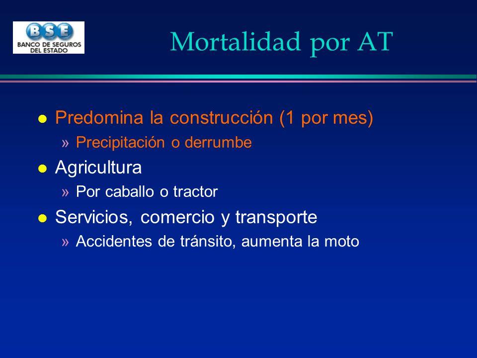 Mortalidad por AT Predomina la construcción (1 por mes) Agricultura