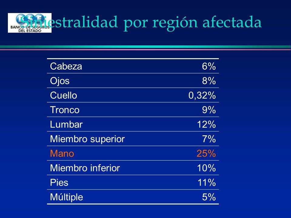 Siniestralidad por región afectada