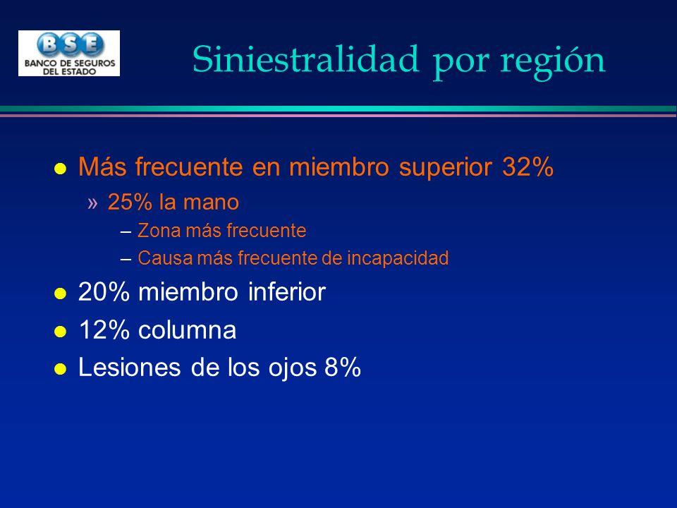 Siniestralidad por región