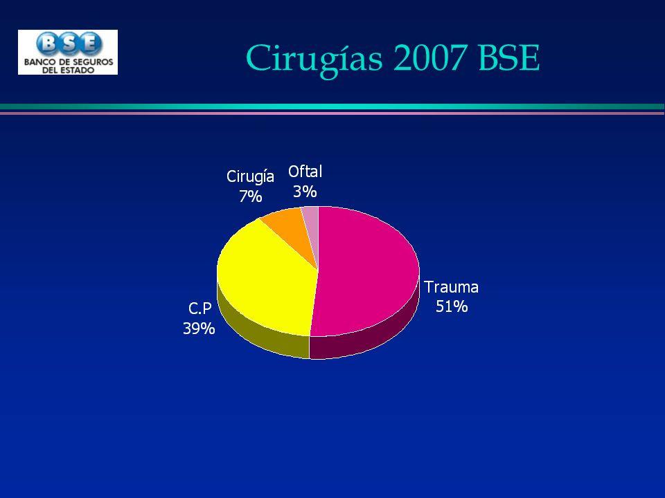 Cirugías 2007 BSE