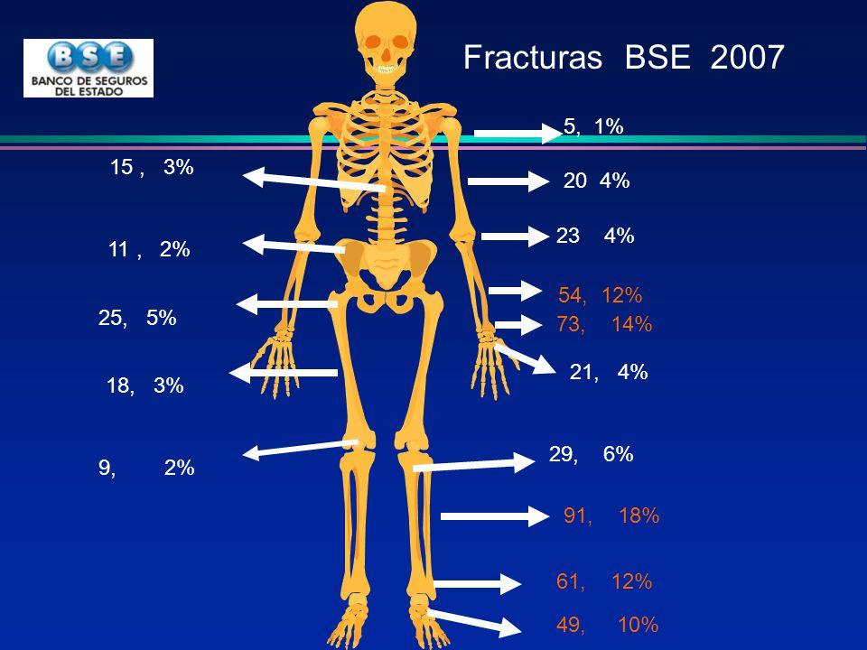 Fracturas BSE 2007 5, 1% 15 , 3% 20 4% 23 4% 11 , 2% 54, 12% 25, 5% 73, 14%